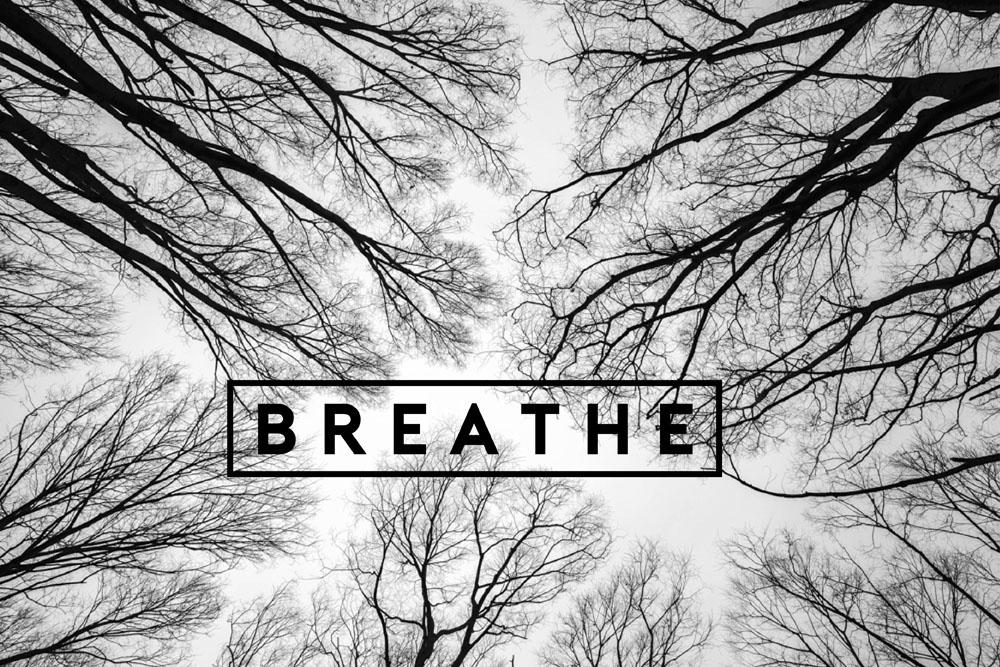 breathe LAB by AG