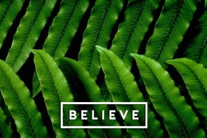 Believe - LAB by AG - SS19 Spring Summer shoes - Zapatos primavera verano 2019