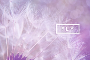 FLY - LAB by AG - SS19 Spring Summer shoes - Zapatos primavera verano 2019